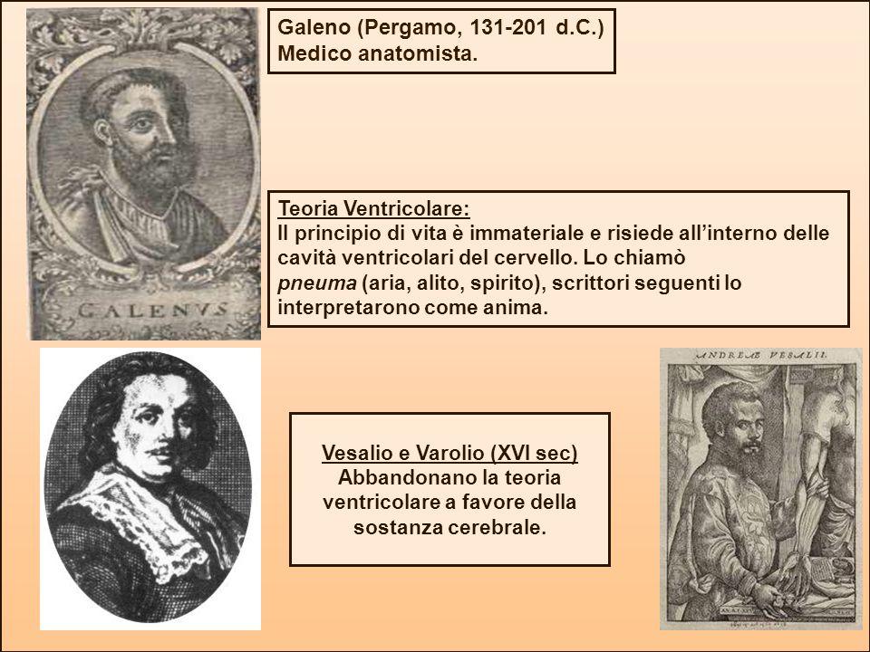 Galeno (Pergamo, 131-201 d.C.) Medico anatomista. Teoria Ventricolare: Il principio di vita è immateriale e risiede allinterno delle cavità ventricola