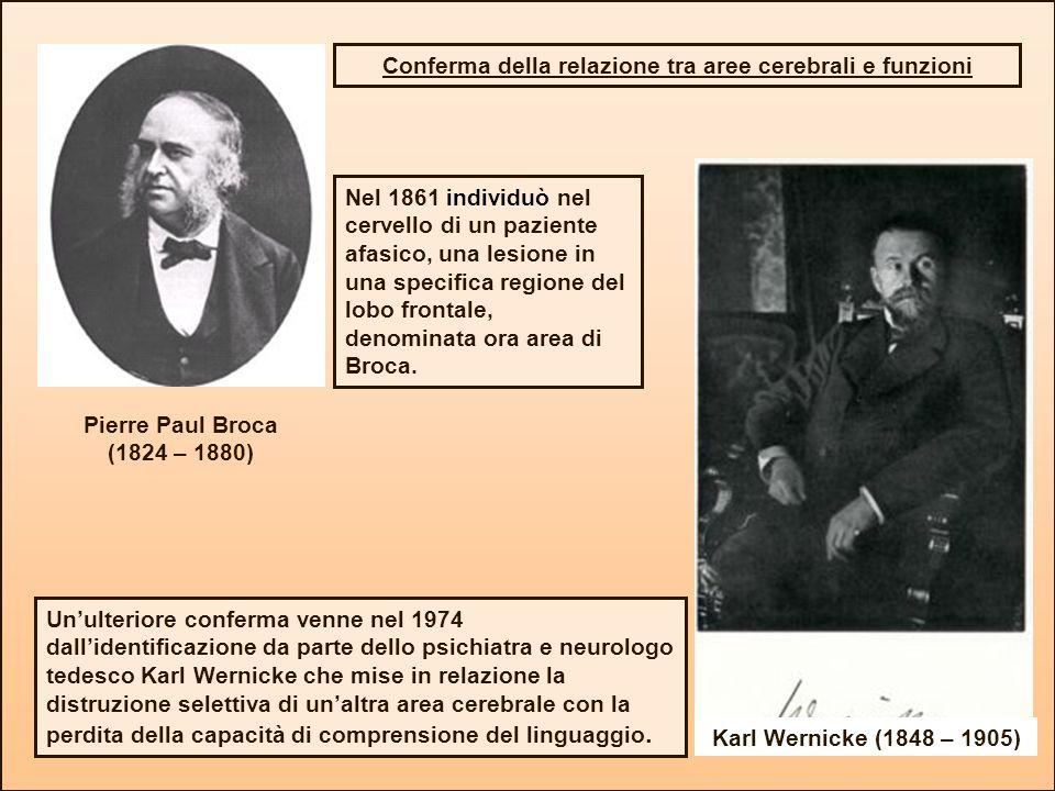 Nel 1861 individuò nel cervello di un paziente afasico, una lesione in una specifica regione del lobo frontale, denominata ora area di Broca. Pierre P