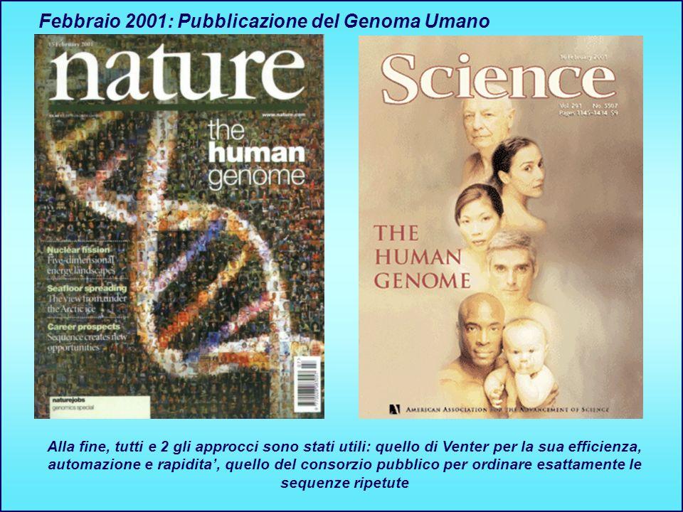 Febbraio 2001: Pubblicazione del Genoma Umano Alla fine, tutti e 2 gli approcci sono stati utili: quello di Venter per la sua efficienza, automazione