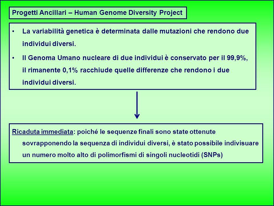 Progetti Ancillari – Human Genome Diversity Project La variabilità genetica è determinata dalle mutazioni che rendono due individui diversi. Il Genoma