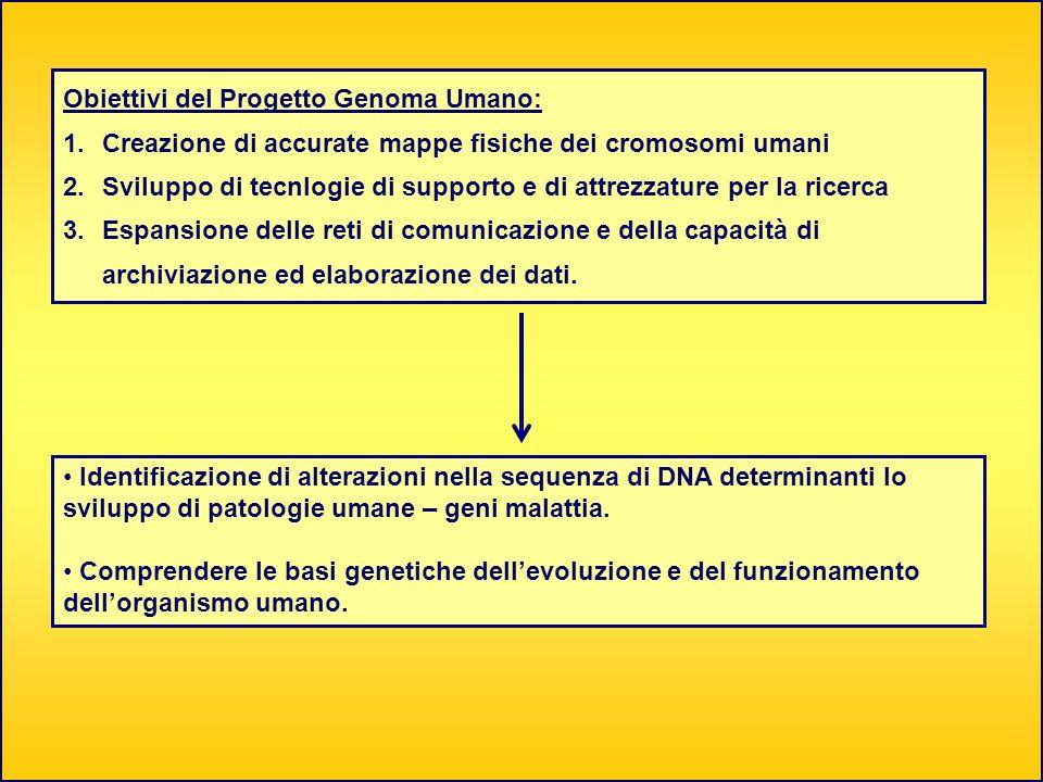 Obiettivi del Progetto Genoma Umano: 1.Creazione di accurate mappe fisiche dei cromosomi umani 2.Sviluppo di tecnlogie di supporto e di attrezzature p