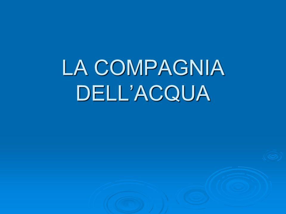 QUATTRO COLOSSI CONTROLLANO IL 55% DEL MERCATO DELLACQUA IN BOTTIGLIA SAN PELLEGRINO-NESTLE SAN PELLEGRINO-NESTLE SAN BENEDETTO SAN BENEDETTO ROCCHETTA-ULIVETO ROCCHETTA-ULIVETO FERRARELLE FERRARELLE FONTE ALTRECONOMIA FONTE ALTRECONOMIA
