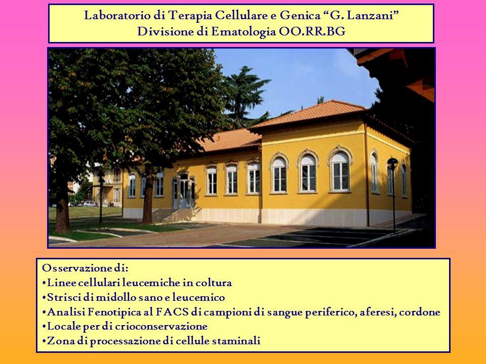 Laboratorio di Terapia Cellulare e Genica G.