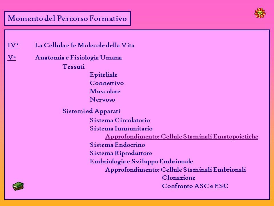 Momento del Percorso Formativo IV a La Cellula e le Molecole della Vita V a Anatomia e Fisiologia Umana Tessuti Epiteliale Connettivo Muscolare Nervoso Sistemi ed Apparati Sistema Circolatorio Sistema Immunitario Approfondimento: Cellule Staminali Ematopoietiche Sistema Endocrino Sistema Riproduttore Embriologia e Sviluppo Embrionale Approfondimento: Cellule Staminali Embrionali Clonazione Confronto ASC e ESC