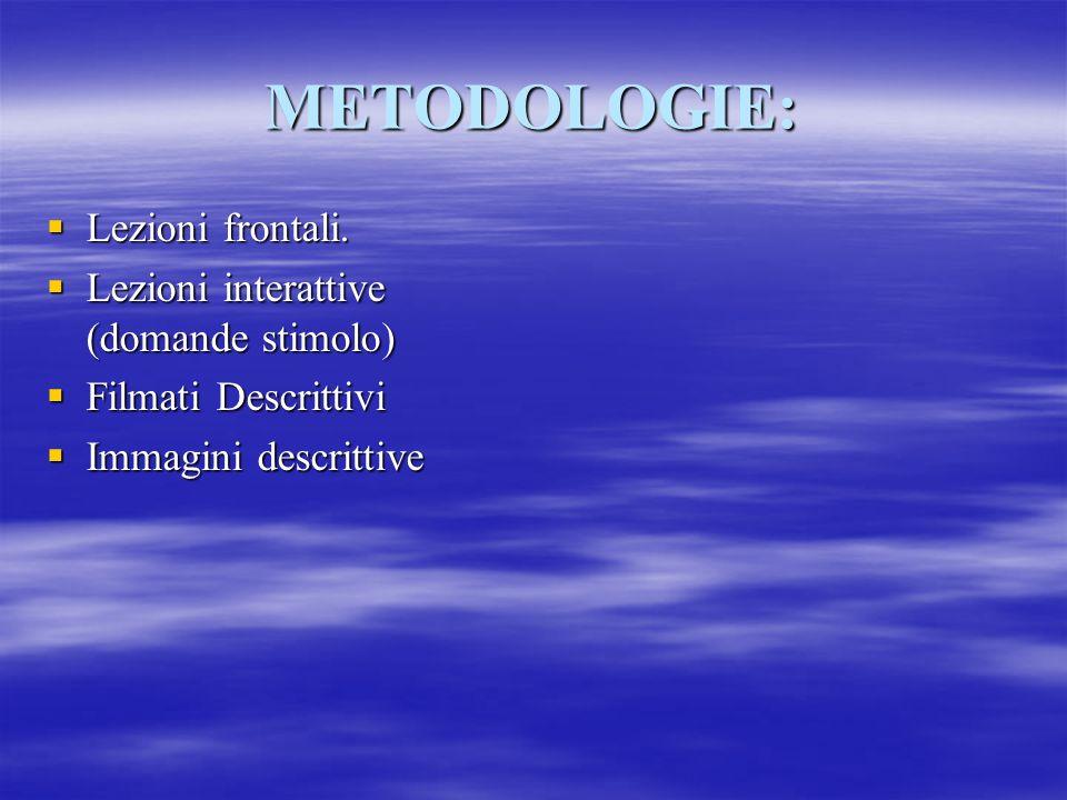 METODOLOGIE: Lezioni frontali.Lezioni frontali.