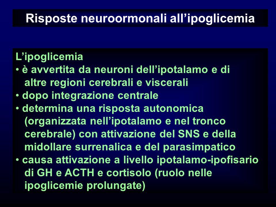 Risposte neuroormonali allipoglicemia Lipoglicemia è avvertita da neuroni dellipotalamo e di altre regioni cerebrali e viscerali dopo integrazione cen