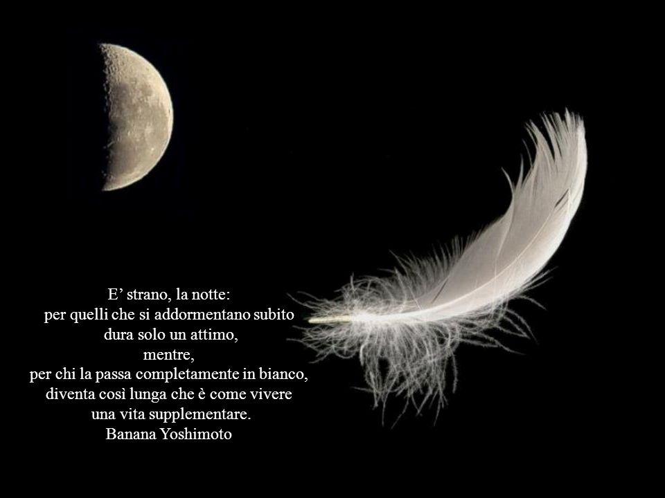 A volte, di notte, accendo una luce per non vedere. Antonio Porchia
