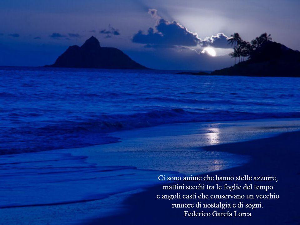 L'amore è l'ala che solleva l'anima verso l'infinito. Romano Battaglia