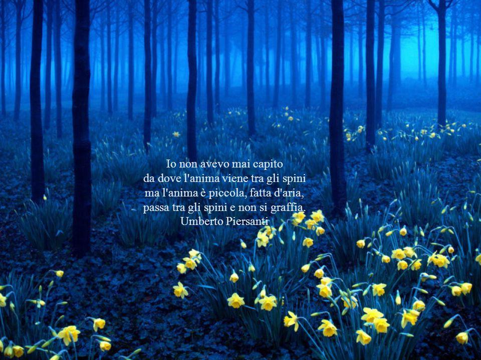 L'anima è tinta dei colori dei tuoi pensieri. Eraclito