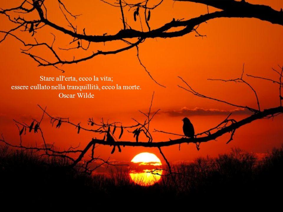 Stare all erta, ecco la vita; essere cullato nella tranquillità, ecco la morte. Oscar Wilde