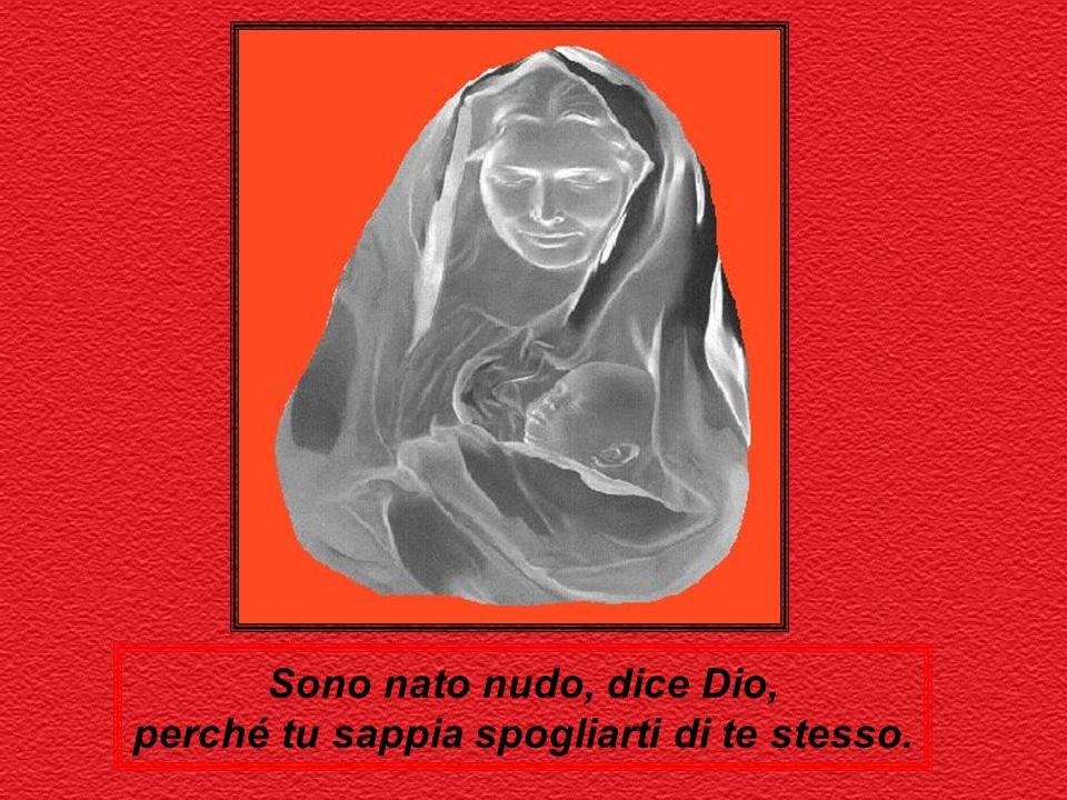 Lambert Noben Tratto da:Festa di Natale, Serie Amico a cura di Renzo Sala, ed. San Paolo, 2000.