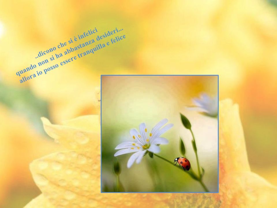 Un'attesa troppo prolungata fa male al cuore, un desiderio soddisfatto è albero di vita. Salomone