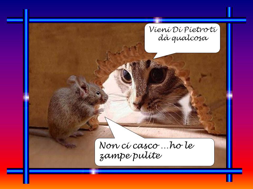 Bersani vuole il tuo voto Non rompesse …non convince né vince