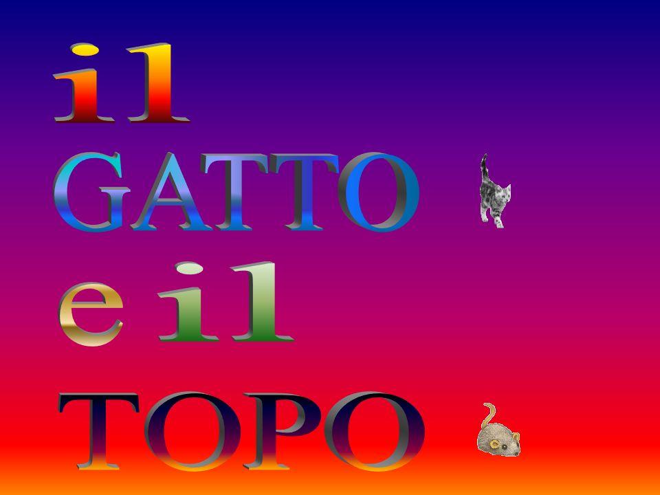 http://www.ppsplanet.com/collaboratore_pps_vittorio.html