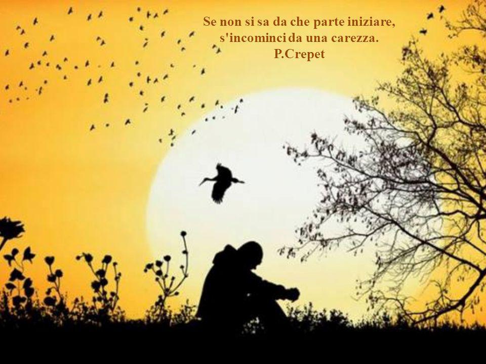 Le cortesie più piccole -un fiore o un libro – piantano sorrisi come semi che germogliano nel buio. Emily Dickinson