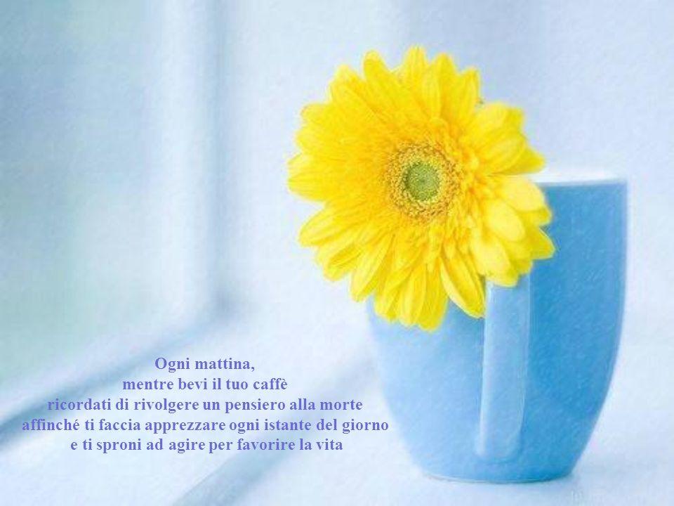Ogni mattina, mentre bevi il tuo caffè ricordati di rivolgere un pensiero alla morte affinché ti faccia apprezzare ogni istante del giorno e ti sproni ad agire per favorire la vita