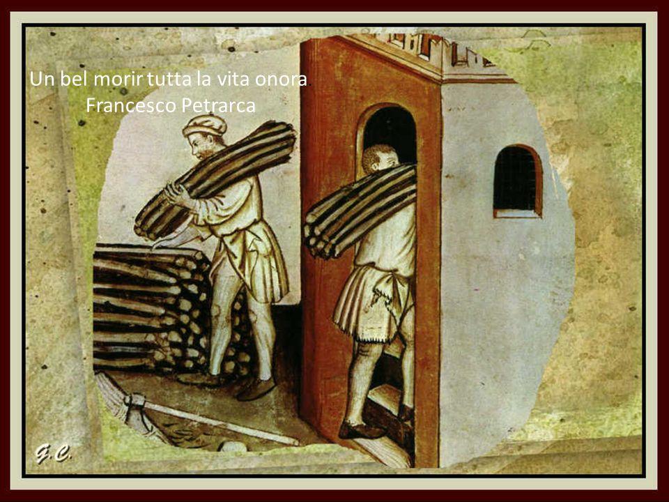 I libri condussero alcuni alla saggezza, altri alla follia. Francesco Petrarca