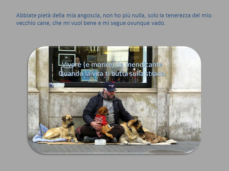 Abbiate pietà della mia angoscia, non ho più nulla, solo la tenerezza del mio vecchio cane, che mi vuol bene e mi segue ovunque vado.