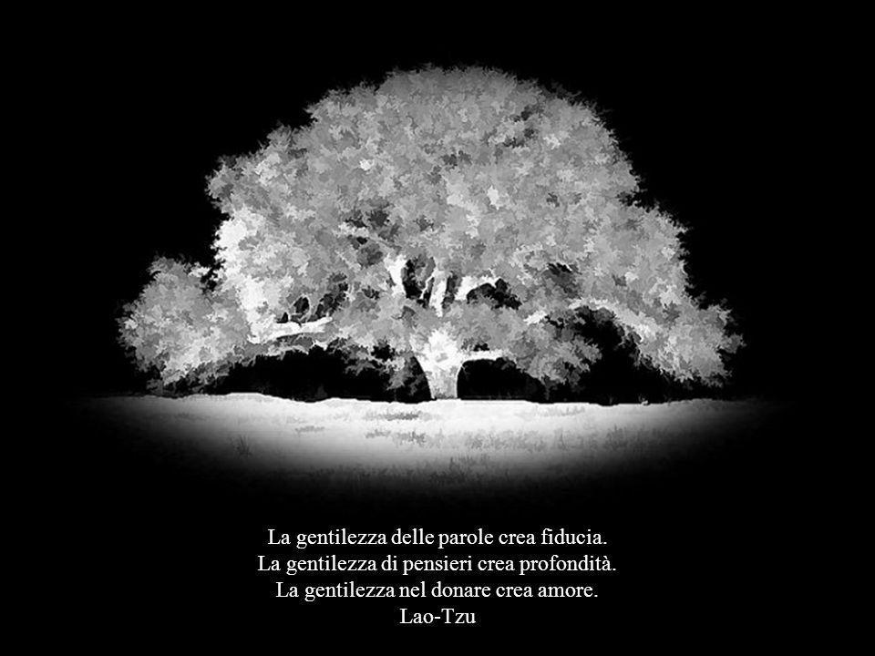 La gentilezza delle parole crea fiducia.La gentilezza di pensieri crea profondità.
