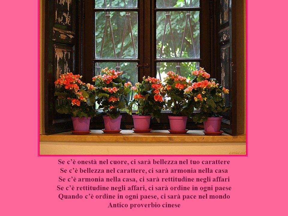 I fiori, sono le creature più dolci che Dio abbia mai fatto e alle quali si sia dimenticato di infondere un'anima. H.W. Beecher
