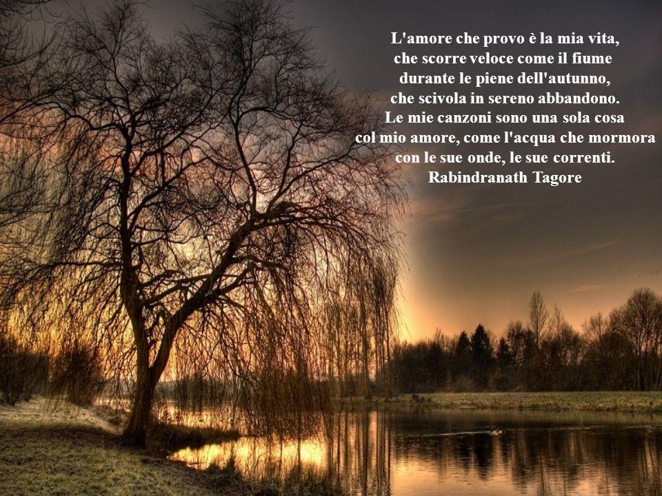 L amore che provo è la mia vita, che scorre veloce come il fiume durante le piene dell autunno, che scivola in sereno abbandono.