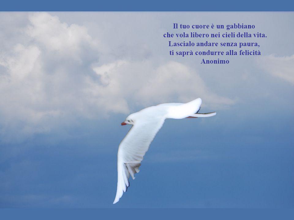 Il tuo cuore è un gabbiano che vola libero nei cieli della vita.