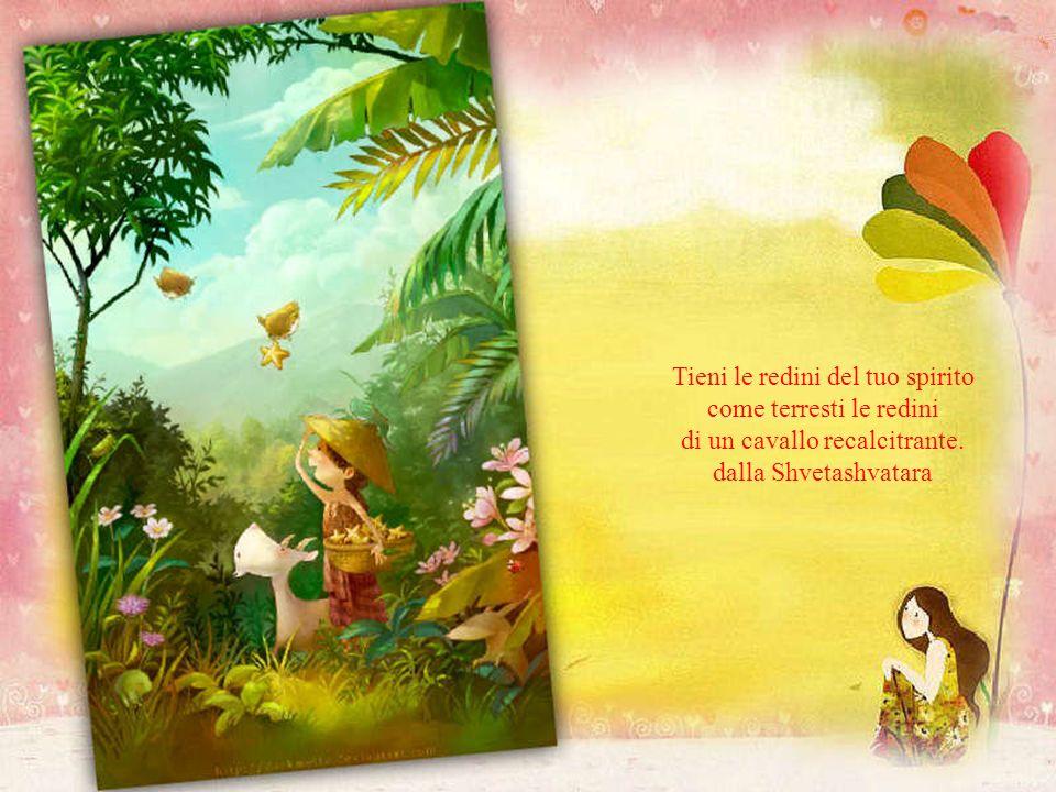 Amore significa comprendere e percepire la diversità dellaltro. Svami Prajanannapada