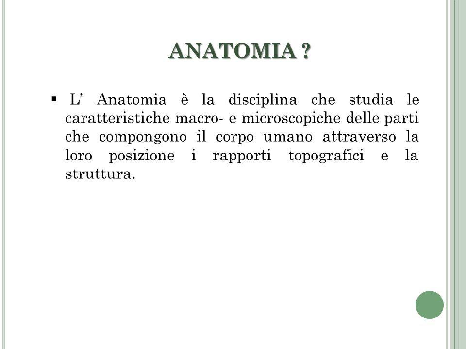 ANATOMIA ? L Anatomia è la disciplina che studia le caratteristiche macro- e microscopiche delle parti che compongono il corpo umano attraverso la lor