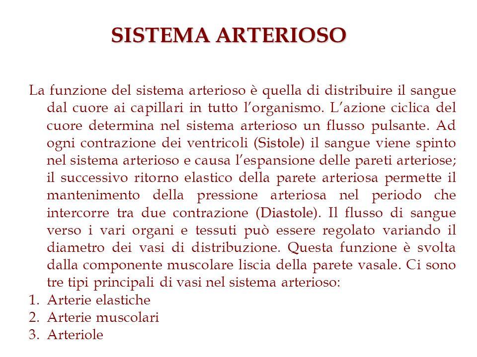 Sistole Diastole La funzione del sistema arterioso è quella di distribuire il sangue dal cuore ai capillari in tutto lorganismo. Lazione ciclica del c