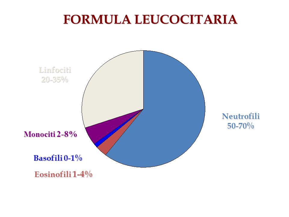 FORMULA LEUCOCITARIA Neutrofili50-70% Linfociti20-35% Monociti 2-8% Basofili 0-1% Eosinofili 1-4%