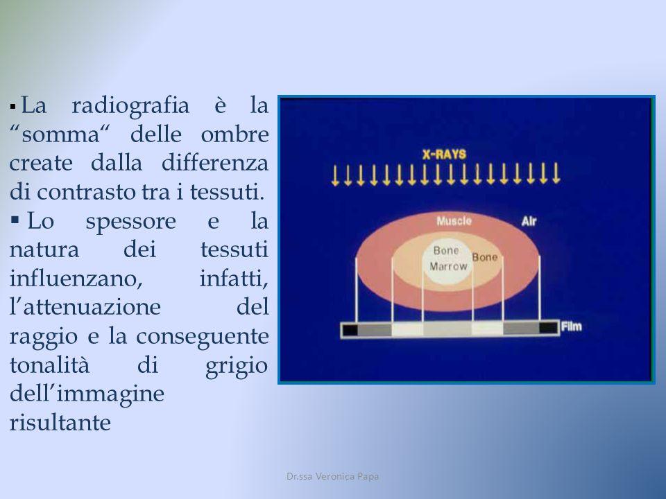 La radiografia è la somma delle ombre create dalla differenza di contrasto tra i tessuti. Lo spessore e la natura dei tessuti influenzano, infatti, la