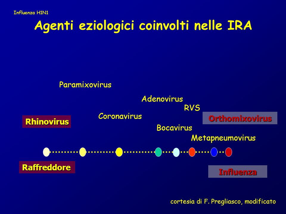 Rhinovirus Adenovirus RVS Coronavirus Orthomixovirus Raffreddore Influenza Paramixovirus Agenti eziologici coinvolti nelle IRA Metapneumovirus Bocavir