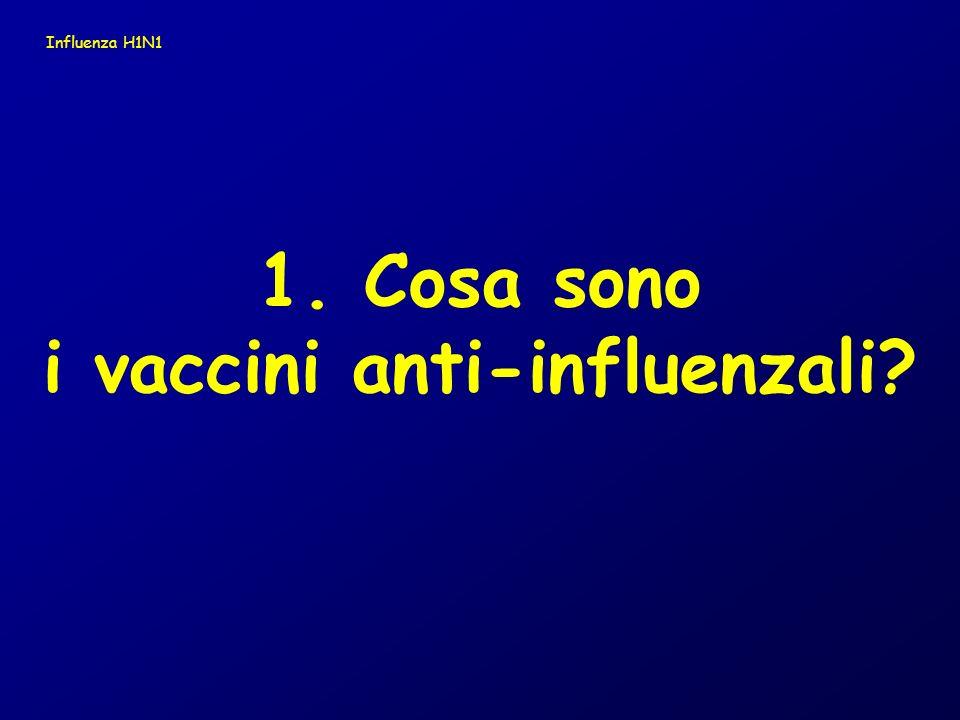 1. Cosa sono i vaccini anti-influenzali? Influenza H1N1