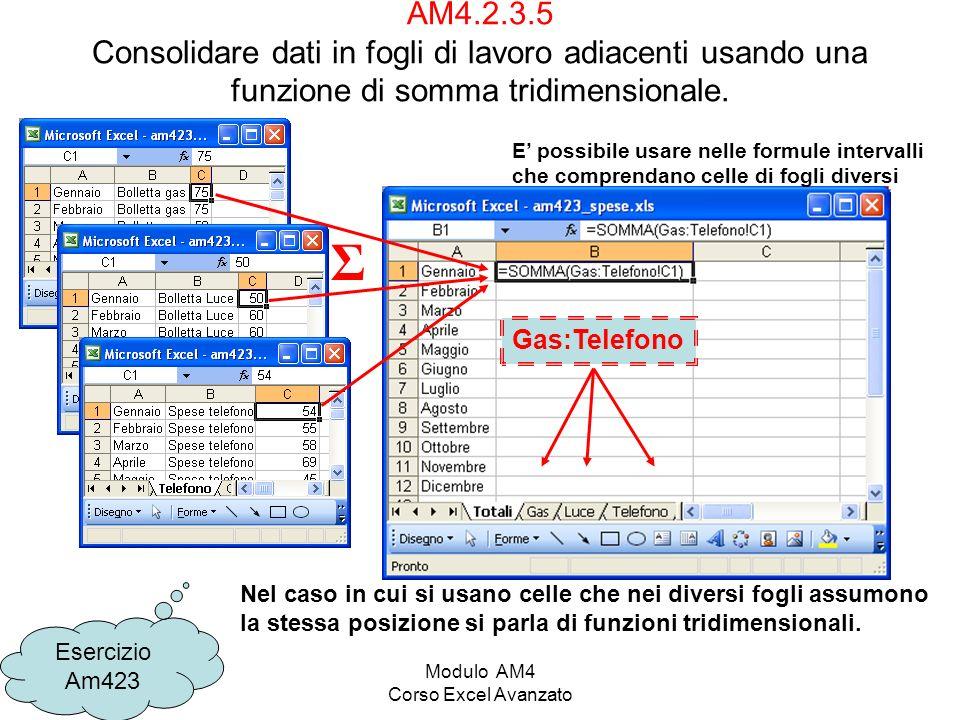 Modulo AM4 Corso Excel Avanzato AM4.2.3.5 Consolidare dati in fogli di lavoro adiacenti usando una funzione di somma tridimensionale. Esercizio Am423