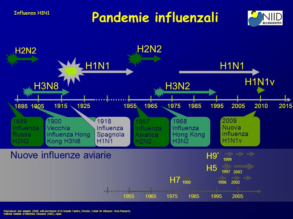 Pandemie influenzali H7 H5 H9 * 1980 1997 Nuove influenze aviarie 19962002 1999 2003 195519651975198519952005 H1N1 H2N2 1889 Influenza Russa H2N2 1957 Influenza Asiatica H2N2 H3N2 1968 Influenza Hong Kong H3N2 H3N8 1900 Vecchia influenza Hong Kong H3N8 1918 Influenza Spagnola H1N1 19151925195519651975198519952005 18951905 2010 2015 2009 Nuova influenza H1N1v Reproduced and adapted (2009) with permission of Dr Masato Tashiro, Director, Center for Influenza Virus Research, National Institute of Infectious Diseases (NIID), Japan.