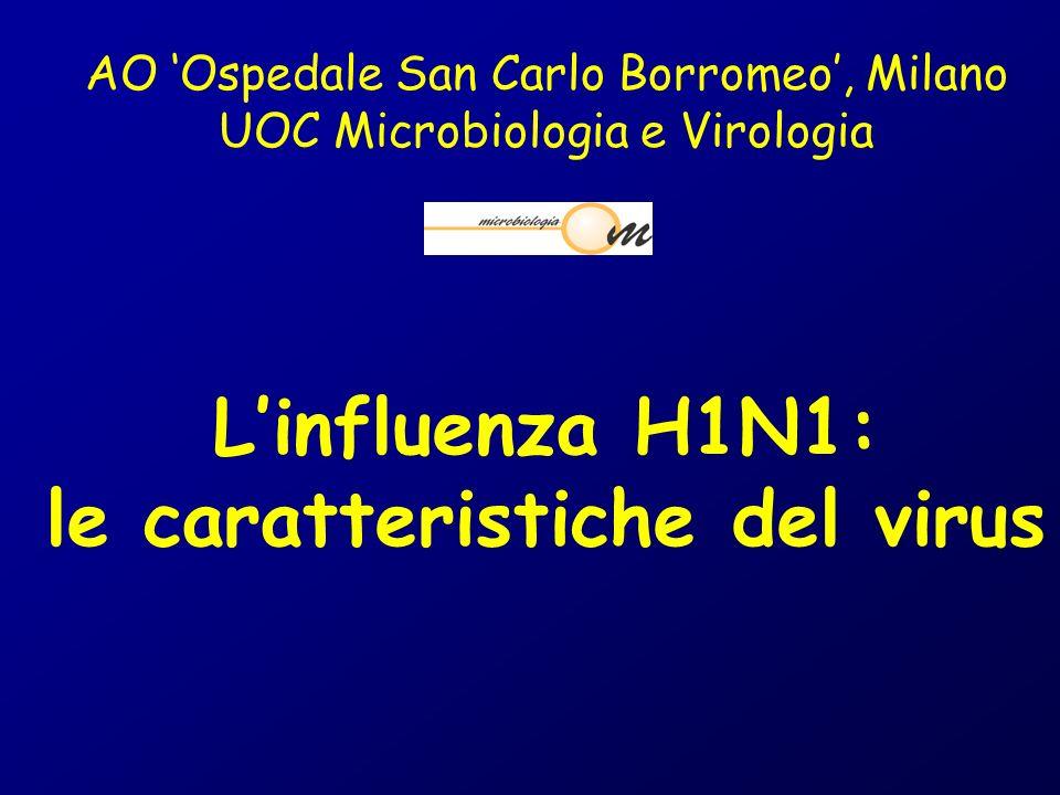 1. Cosa sono i virus influenzali? Influenza H1N1