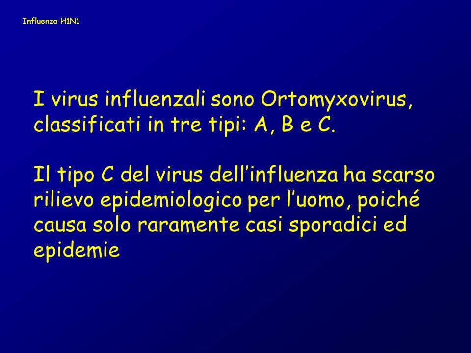 I virus influenzali di tipo A possono essere suddivisi in sottotipi sulla base delle loro proteine di superficie – emoagglutinina (HA) e neuraminidasi (NA).