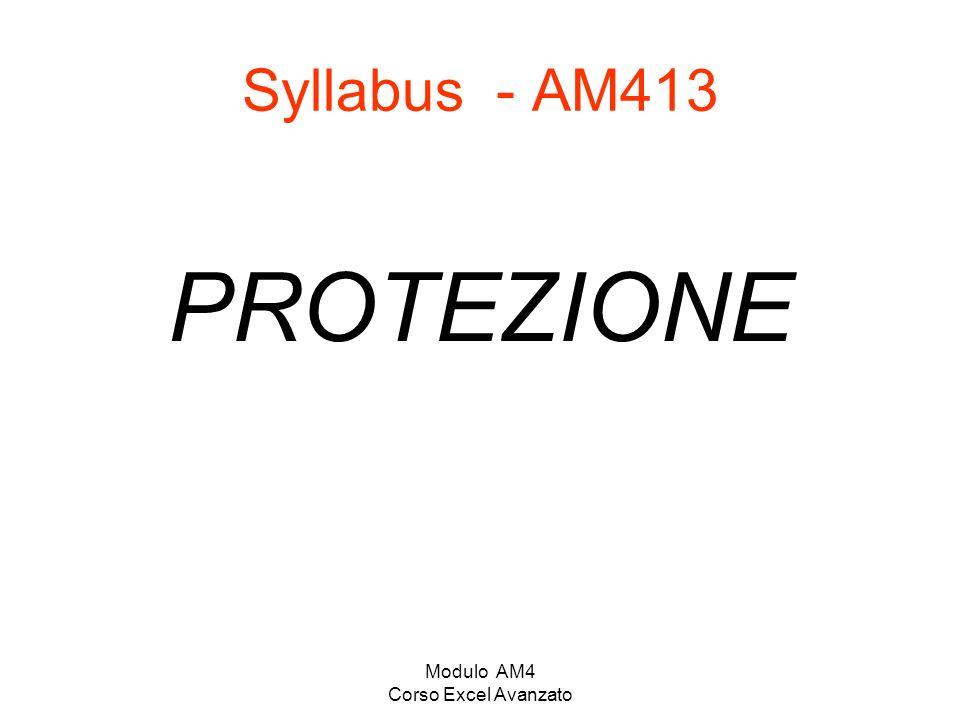 Modulo AM4 Corso Excel Avanzato Syllabus - AM413 PROTEZIONE