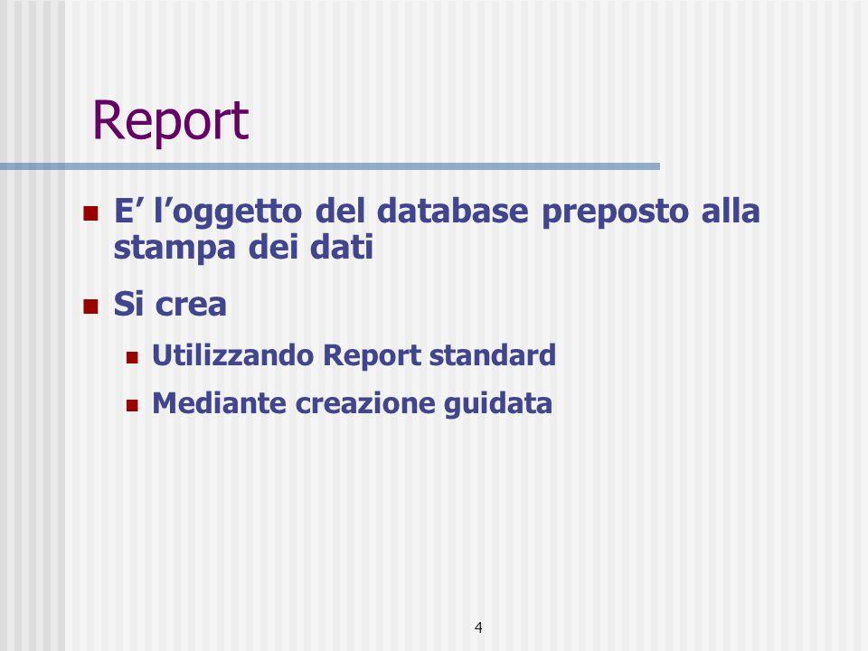 4 Report E loggetto del database preposto alla stampa dei dati Si crea Utilizzando Report standard Mediante creazione guidata