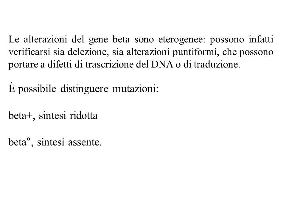 Le alterazioni del gene beta sono eterogenee: possono infatti verificarsi sia delezione, sia alterazioni puntiformi, che possono portare a difetti di