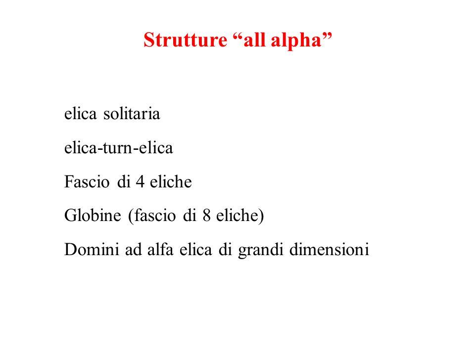 Strutture all alpha elica solitaria elica-turn-elica Fascio di 4 eliche Globine (fascio di 8 eliche) Domini ad alfa elica di grandi dimensioni