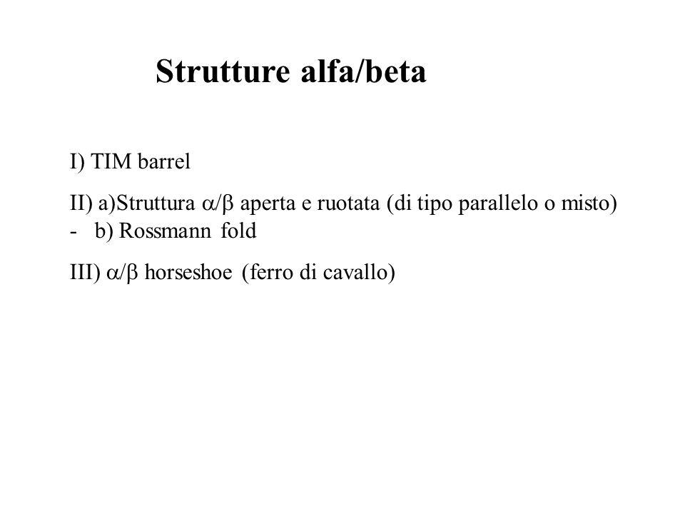 Strutture alfa/beta I) TIM barrel II) a)Struttura / aperta e ruotata (di tipo parallelo o misto) - b) Rossmann fold III) / horseshoe (ferro di cavallo