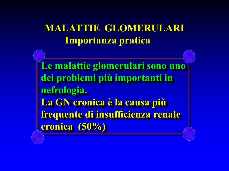 MALATTIE GLOMERULARI Importanza pratica Importanza pratica Le malattie glomerulari sono uno Le malattie glomerulari sono uno dei problemi più importan