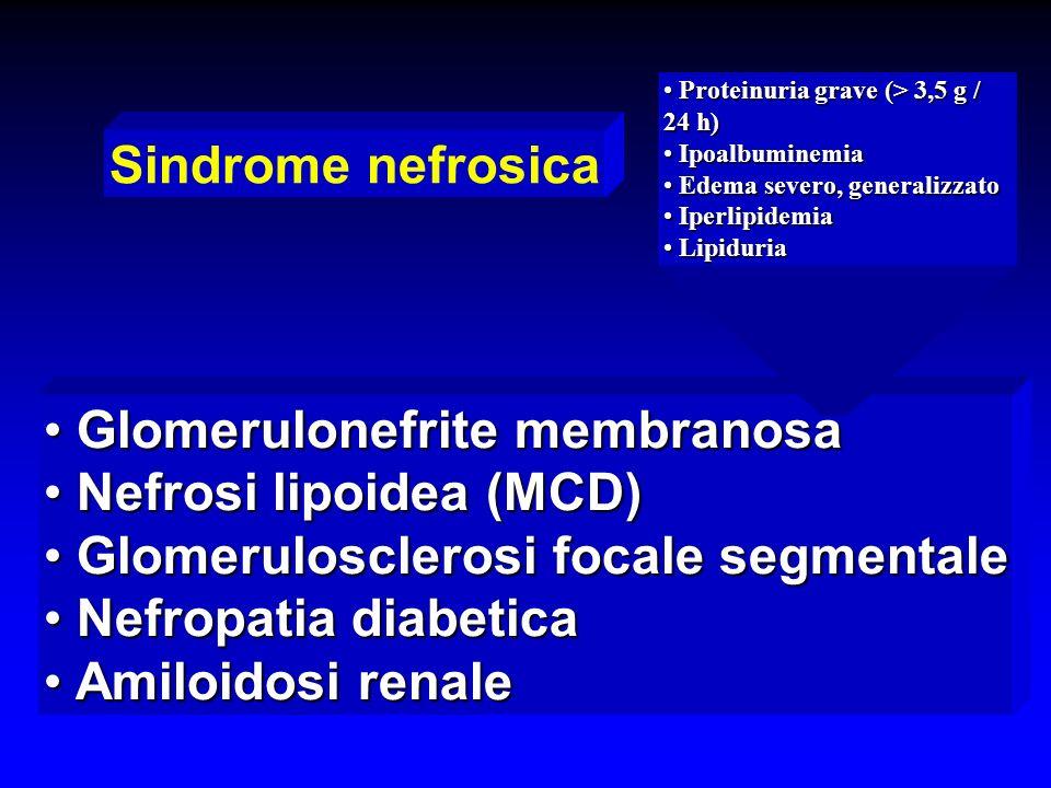 Sindrome nefrosica Glomerulonefrite membranosa Glomerulonefrite membranosa Nefrosi lipoidea (MCD) Nefrosi lipoidea (MCD) Glomerulosclerosi focale segm