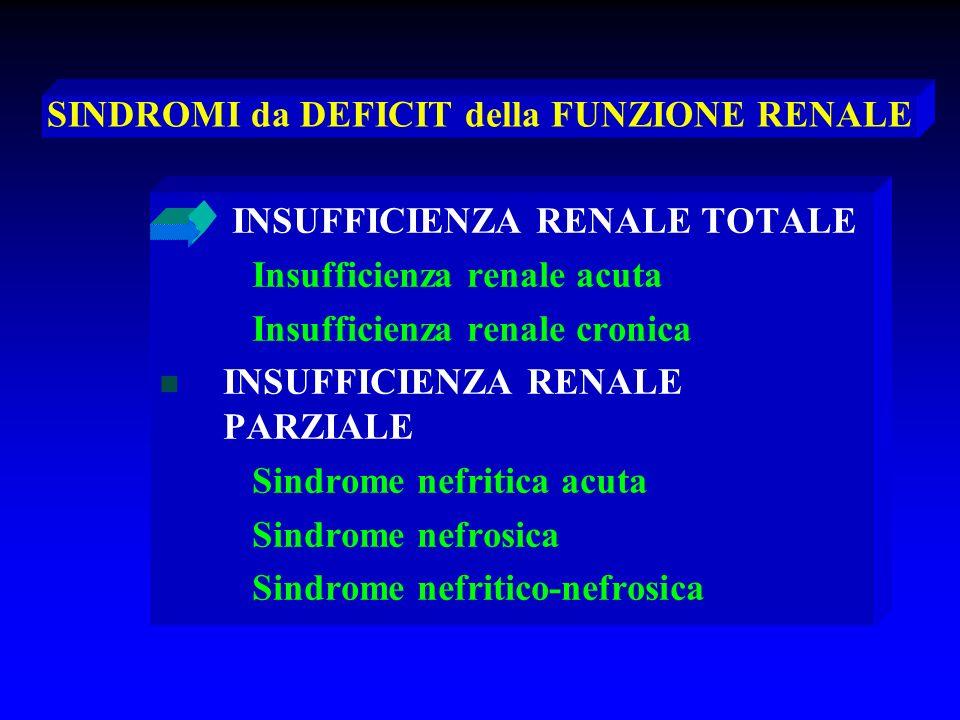 MALATTIE GLOMERULARI Importanza pratica Importanza pratica Le malattie glomerulari sono uno Le malattie glomerulari sono uno dei problemi più importanti in dei problemi più importanti in nefrologia.