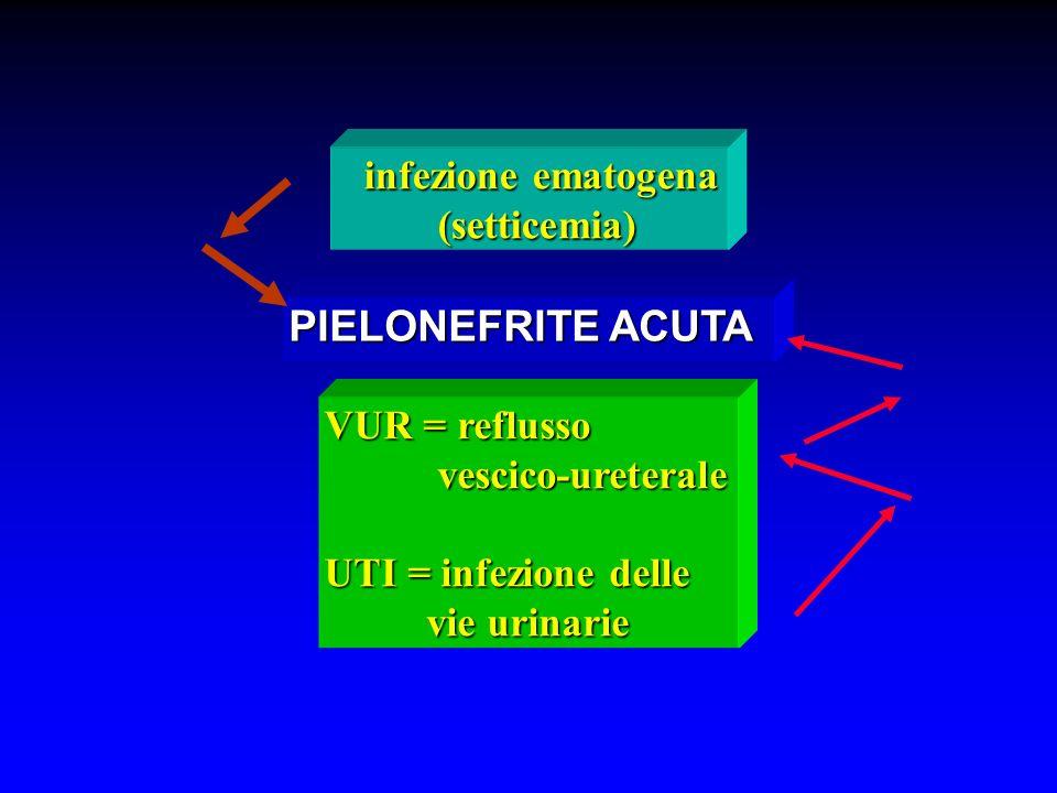 VUR = reflusso vescico-ureterale vescico-ureterale UTI = infezione delle vie urinarie vie urinarie PIELONEFRITE ACUTA infezione ematogena infezione em