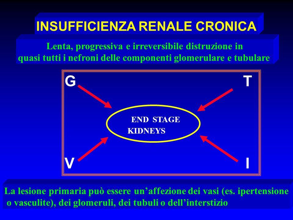 INSUFFICIENZA RENALE CRONICA G T END STAGE KIDNEYS V I Lenta, progressiva e irreversibile distruzione in quasi tutti i nefroni delle componenti glomer