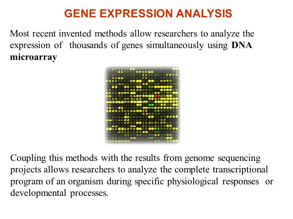 Most recent invented methods allow researchers to analyze the expression of thousands of genes simultaneously using DNA microarray Coupling this metho