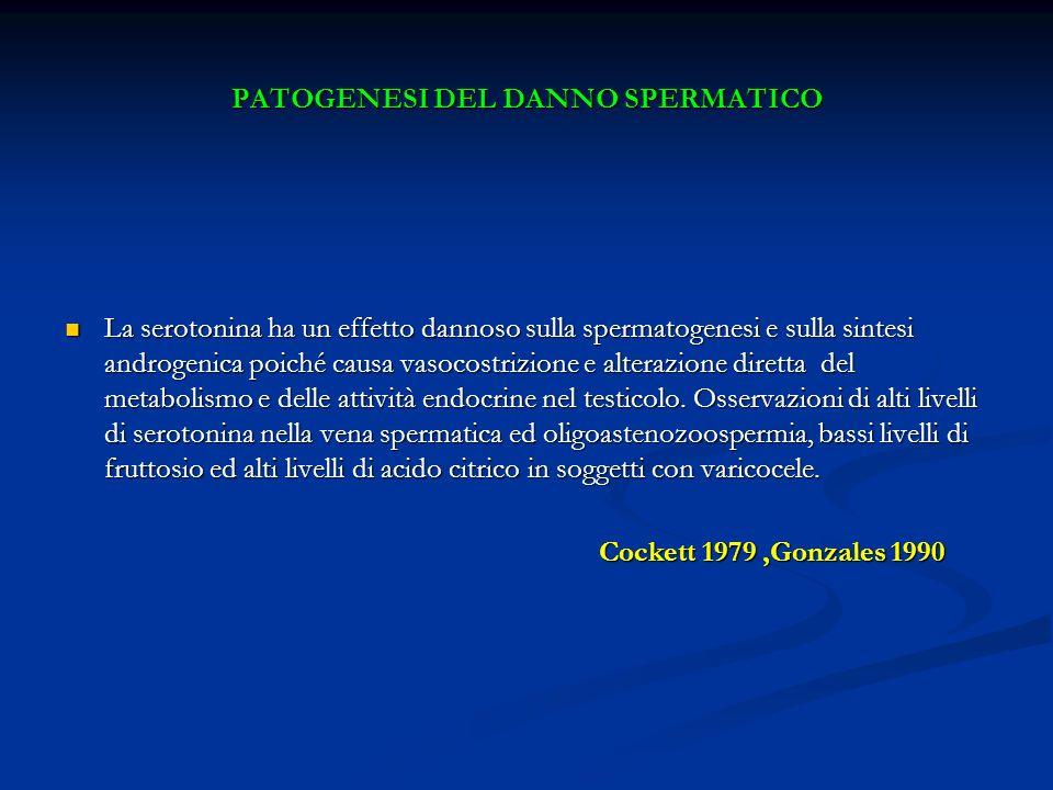 PATOGENESI DEL DANNO SPERMATICO La serotonina ha un effetto dannoso sulla spermatogenesi e sulla sintesi androgenica poiché causa vasocostrizione e al