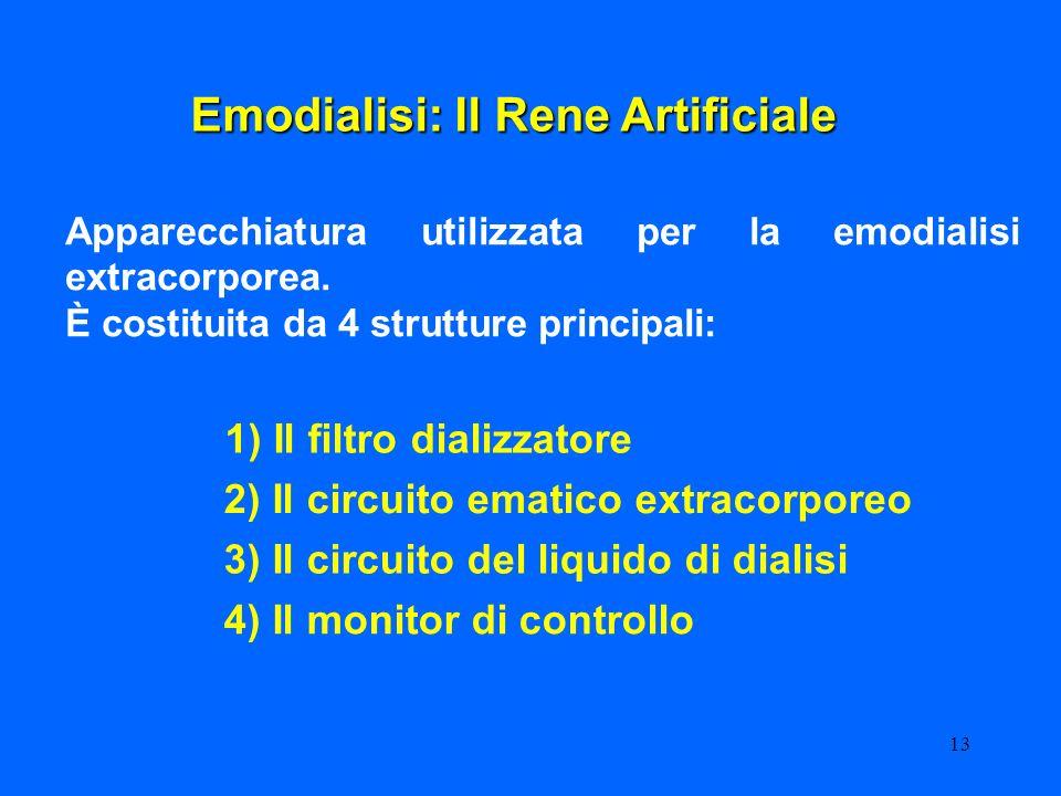 13 Emodialisi: Il Rene Artificiale Apparecchiatura utilizzata per la emodialisi extracorporea. È costituita da 4 strutture principali: 1) Il filtro di